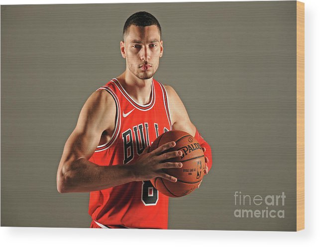 Media Day Wood Print featuring the photograph Zach Lavine by Randy Belice