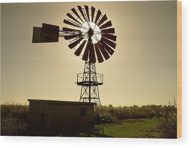 Outdoors Wood Print featuring the photograph American-style windmill in backlight by Bernd Schunack