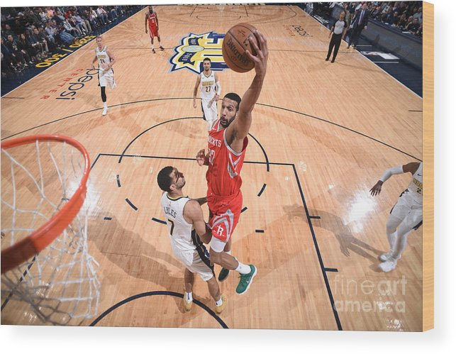 Nba Pro Basketball Wood Print featuring the photograph Brandan Wright by Garrett Ellwood