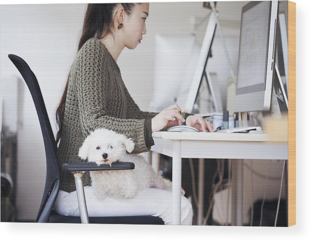 Pets Wood Print featuring the photograph Business Woman Working At Office With Dog by Kohei Hara