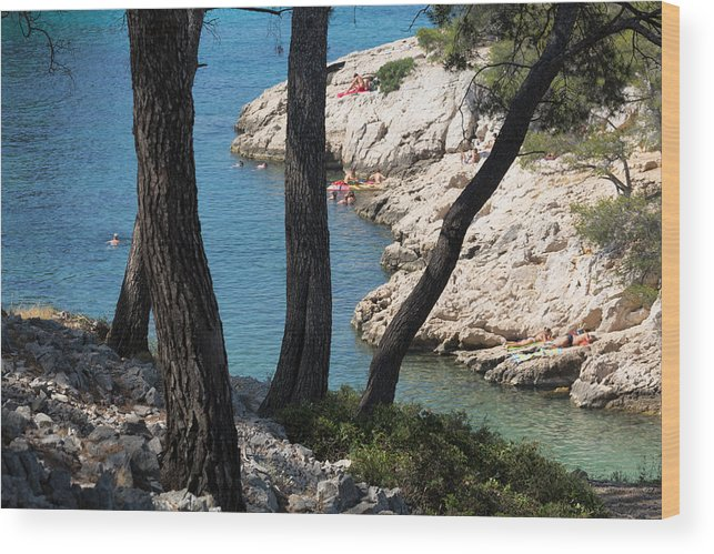 Tranquility Wood Print featuring the photograph Calanques near Cassis by Martin Child