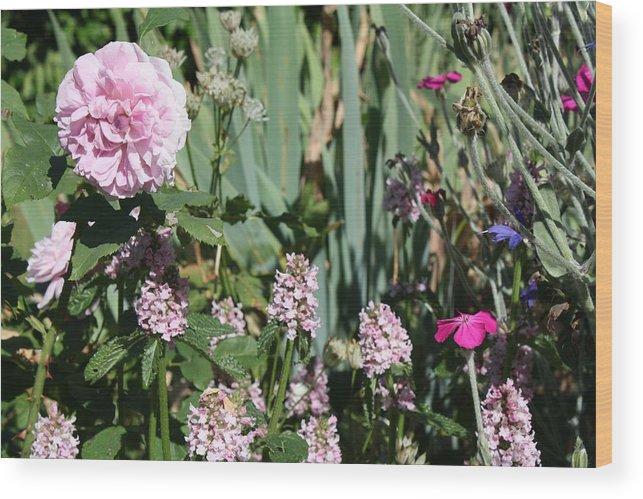 Cottage Garden Wood Print featuring the photograph Cottage Garden by Vicki Cridland