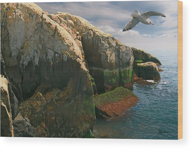 Acadia National Park Wood Print featuring the drawing Crusin the Rocks by Brent Ander