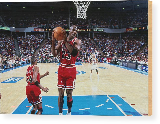 Chicago Bulls Wood Print featuring the photograph Horace Grant and Michael Jordan by Brian Drake
