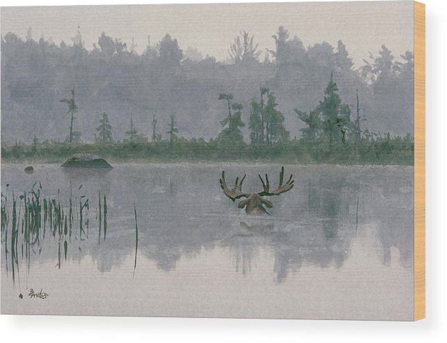 Moose Wood Print featuring the painting Moose Crossing by Brent Ander