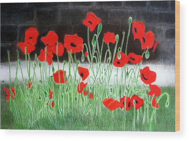 Landscape Wood Print featuring the drawing Poppies by Kori Vincent