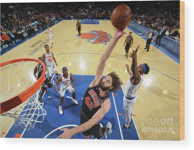 Nba Pro Basketball Wood Print featuring the photograph Robin Lopez by Jesse D. Garrabrant