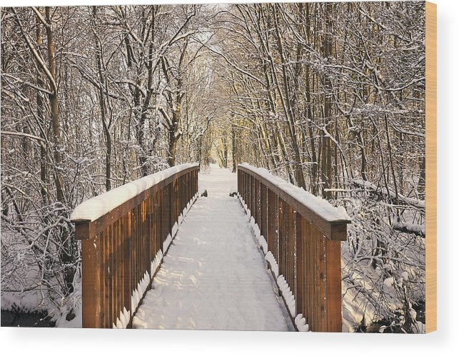 Snow Wood Print featuring the photograph Towards The Winter Wonderland by Bernd Schunack