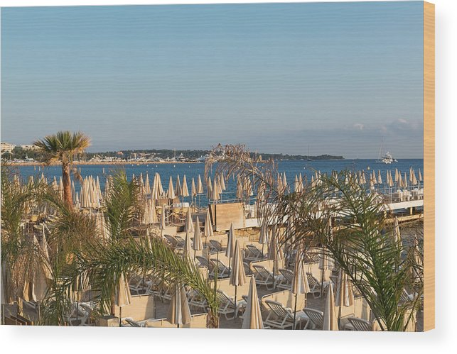 Chaise Longue Wood Print featuring the photograph Umbrellas and beach chairs on the beach, Cannes, French Riviera by Jean-Marc PAYET
