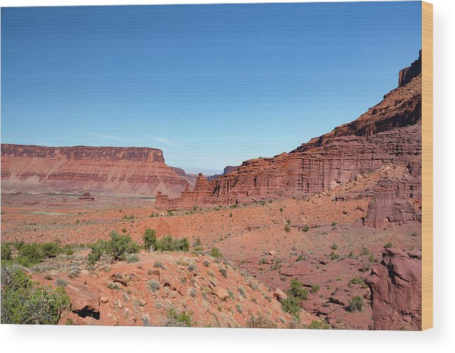 Fisher Towers Wood Print featuring the photograph Wild Utah Landscape by Jim Thompson