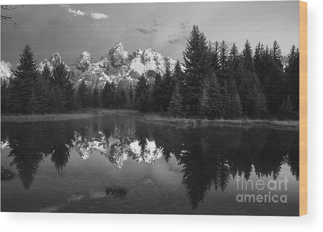 Grand Tetons Wood Print featuring the photograph Grand Tetons by Dennis Hammer