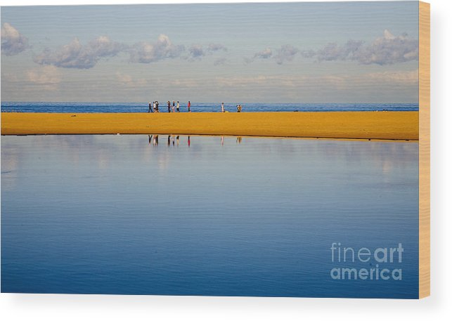 Dunes Lowry Sand Sky Reflection Sun Lifestyle Narrabeen Australia Wood Print featuring the photograph Narrabeen dunes by Sheila Smart Fine Art Photography