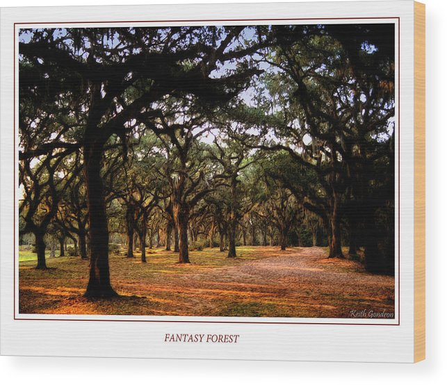 Fantasy Wood Print featuring the photograph Fantasy Forest by Keith Gondron