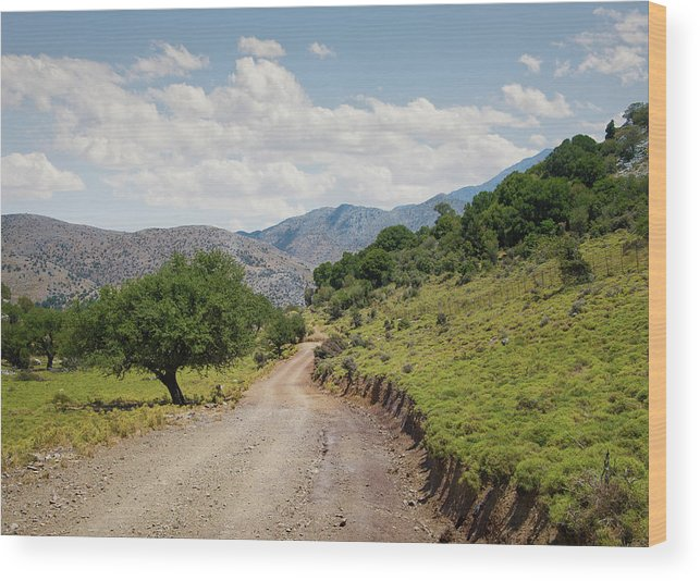 Tranquility Wood Print featuring the photograph Mountain Dirt Road In Northern Crete by Ed Freeman