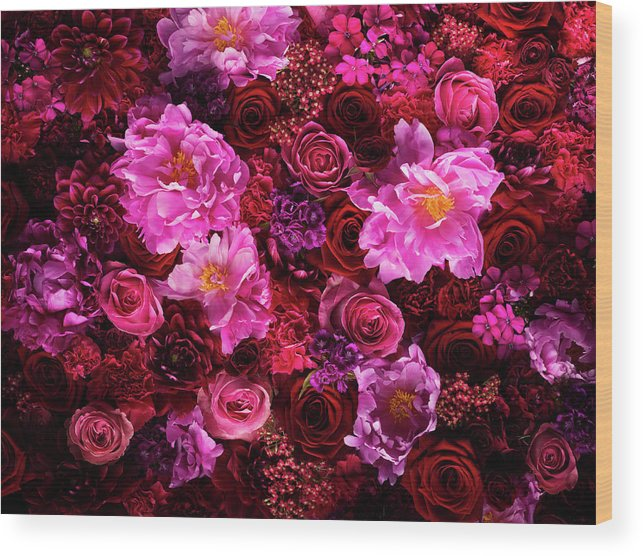 Tranquility Wood Print featuring the photograph Red And Pink Cut Flowers, Close Up by Jonathan Knowles