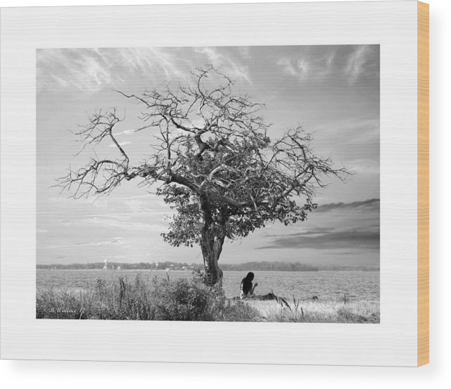 2d Wood Print featuring the photograph Introspective by Brian Wallace