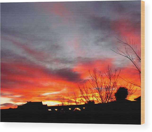 Morning Glory Wood Print featuring the photograph Morning Glory by Joyce Woodhouse