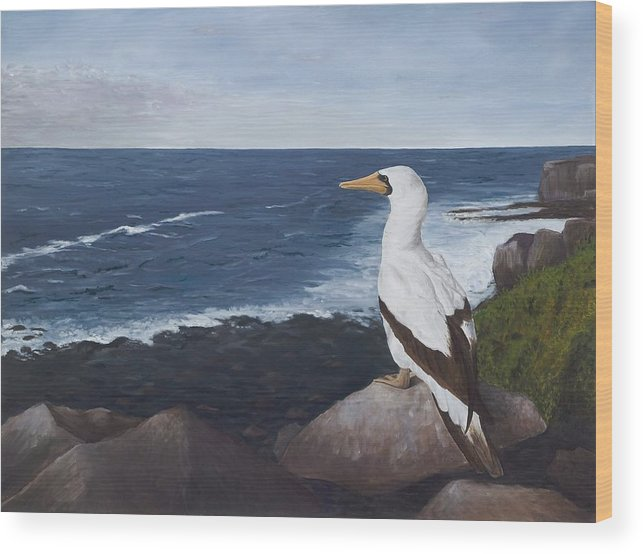 Nazca Booby Wood Print featuring the painting Beachside View by Elizabeth Rieke Hefley