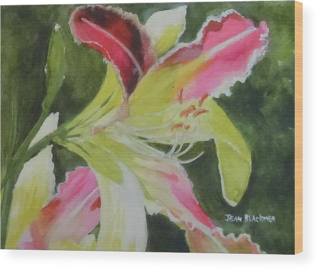 Daylily Wood Print featuring the painting Daylily Study 1 by Jean Blackmer