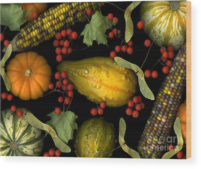 Slanec Wood Print featuring the photograph Fall Harvest by Christian Slanec