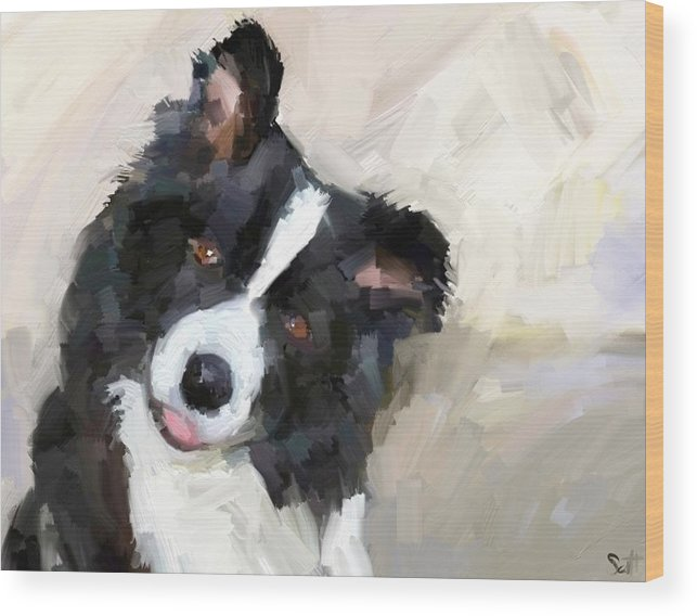 Border Collie Dog Sheepdog Wood Print featuring the digital art Got any sheep? by Scott Waters
