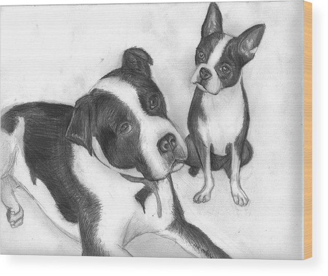Dog Wood Print featuring the drawing Ms Proutys dogs by Katie Alfonsi