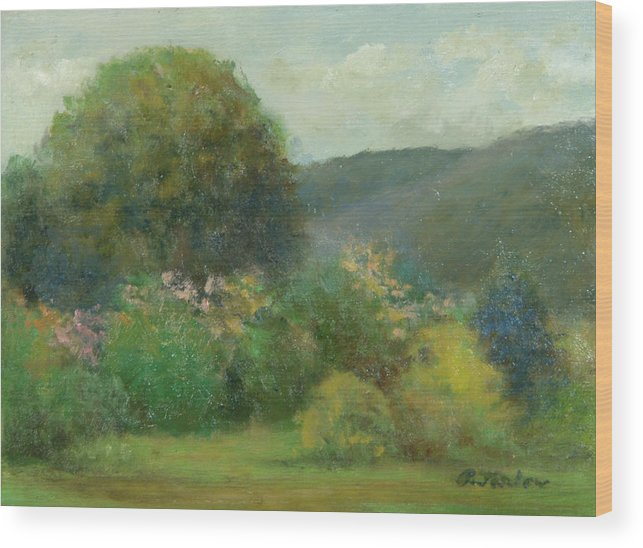 Landscape Wood Print featuring the painting Philipstown Meadow by Phyllis Tarlow