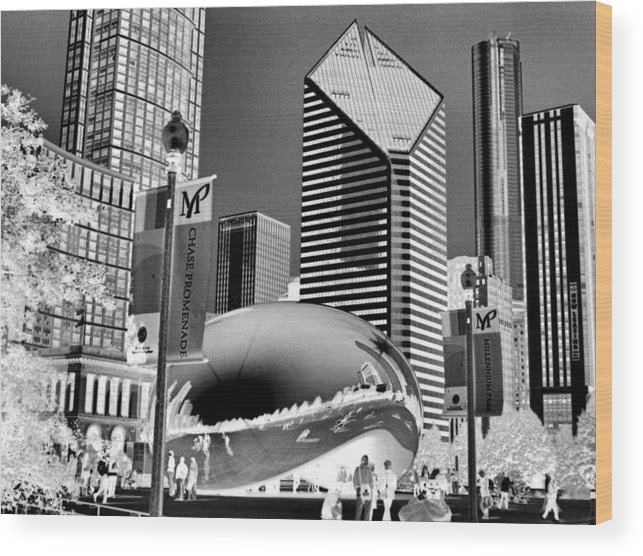 The Bean Wood Print featuring the photograph The Bean - 2 by Ely Arsha