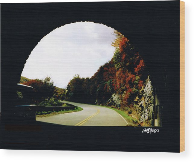 Tunnel Vision Wood Print featuring the photograph Tunnel Vision by Seth Weaver