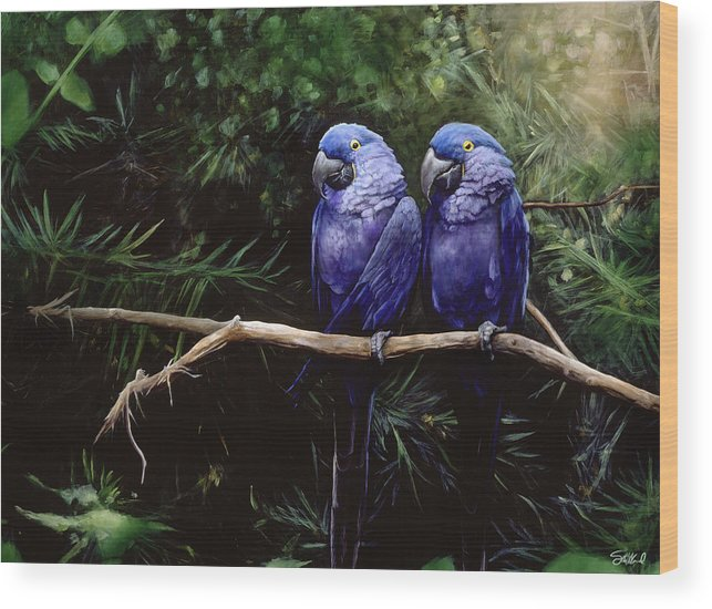 Macaw Art Wood Print featuring the painting Twins by Steve Goad