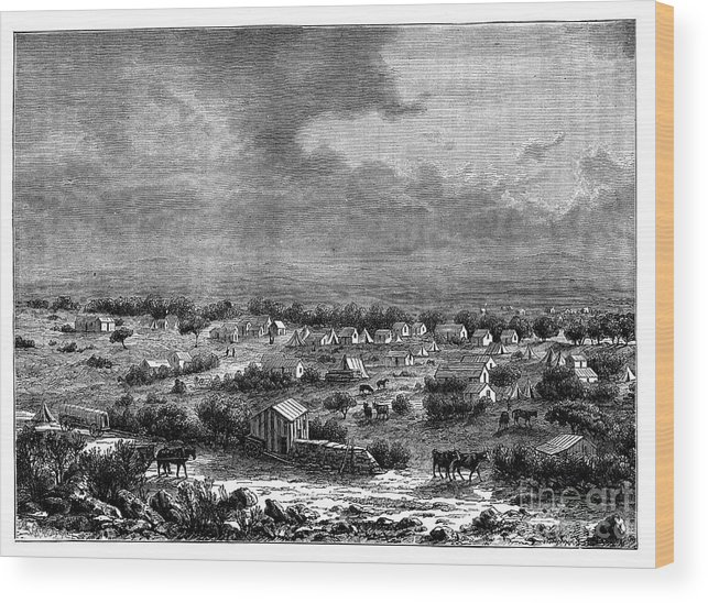 Working Animal Wood Print featuring the drawing Berkly Or Klipdrift, A Town by Print Collector