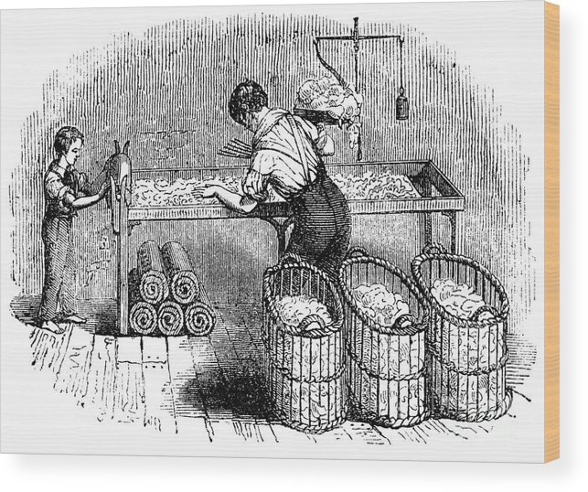 Working Wood Print featuring the drawing Cotton Manufacture, C1845 by Print Collector