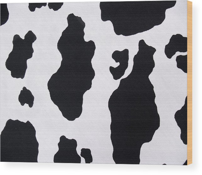Animal Skin Wood Print featuring the photograph Cow Background by Schulteproductions
