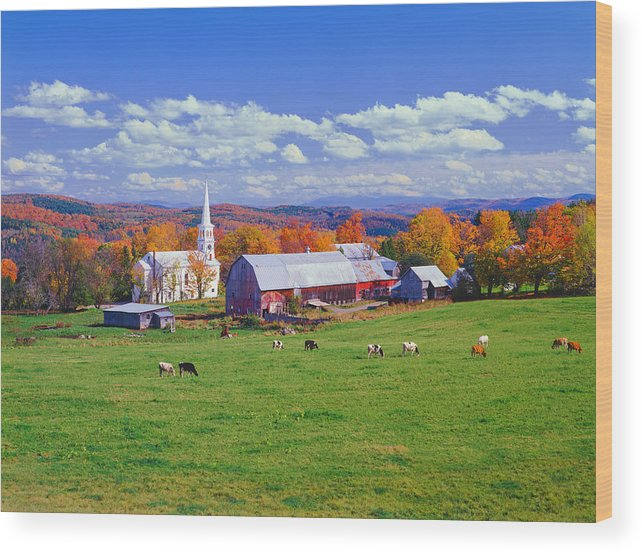 Scenics Wood Print featuring the photograph Lush Autumn Countryside In Vermont With by Ron thomas