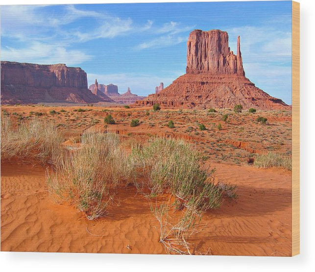 Tranquility Wood Print featuring the photograph Monument Valley Landscape by Sandra Leidholdt