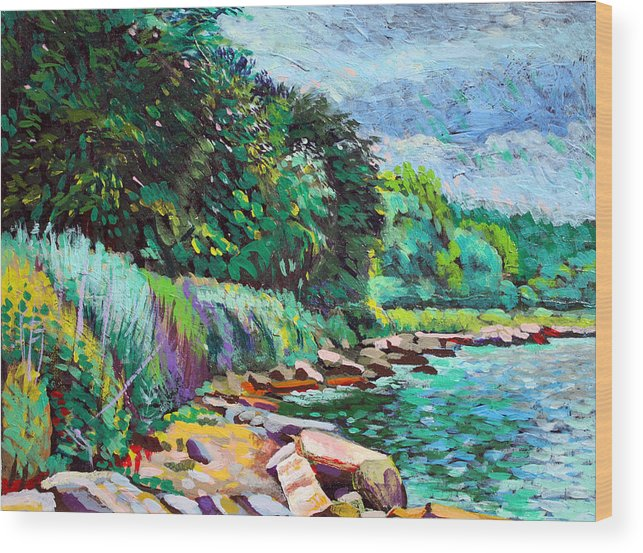 Tranquility Wood Print featuring the digital art Summer Shore Of Hudson River, New York by Charles Harker