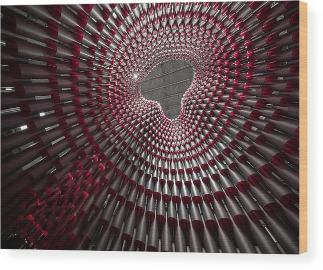 Dome Wood Print featuring the photograph Tubular Construct by Christopher Budny