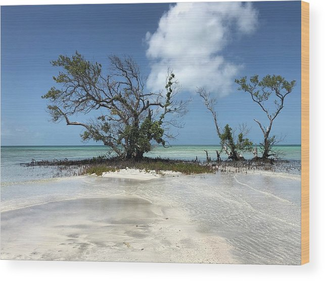 Key West Florida Waters Wood Print featuring the photograph Key West Waters by Ashley Turner