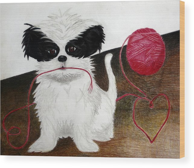 Animals Wood Print featuring the drawing Oreo by Kori Vincent