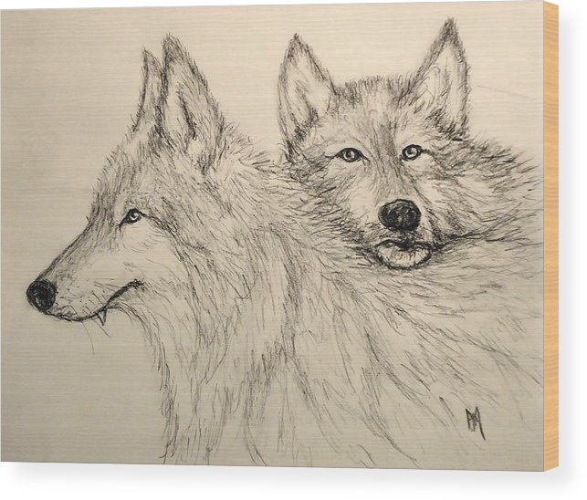 Wolves Wood Print featuring the drawing Timberwolf by Pete Maier