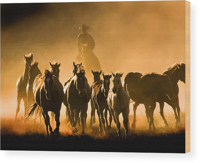 Horses Wrangler Ranching Wood Print featuring the photograph Driving the Herd by Lourie Zipf