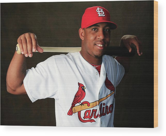 Media Day Wood Print featuring the photograph St. Louis Cardinals Photo Day by Rob Carr