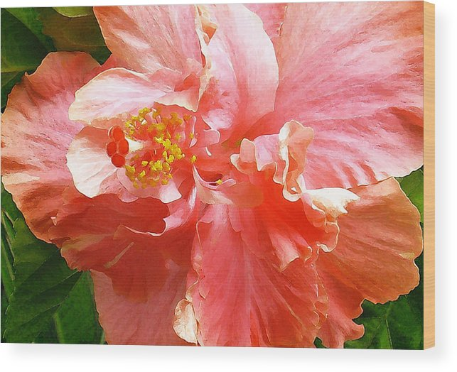 Hibiscus Wood Print featuring the digital art Bright Pink Hibiscus by James Temple