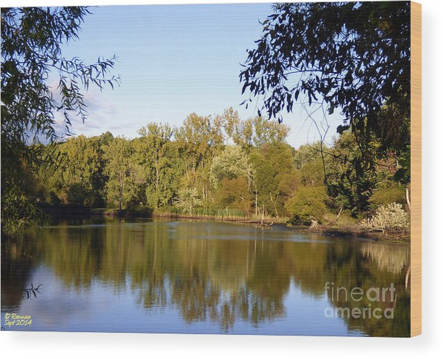 Waterscape Wood Print featuring the photograph Delta Lake Reflections by Rennae Christman