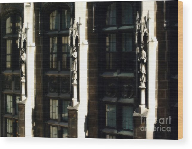 Statues Wood Print featuring the photograph From Rome to Chicago by Frank J Casella