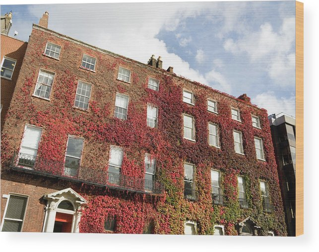 Dublin Wood Print featuring the photograph Ivy Covered Georgian Style Building In by Lleerogers