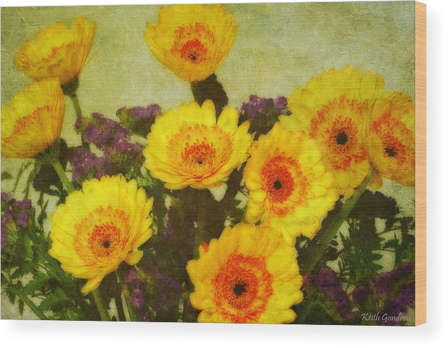 Bouquet Wood Print featuring the photograph Lots of Daisies by Keith Gondron