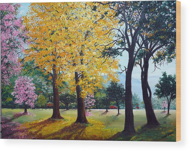 Tree Painting Landscape Painting Caribbean Painting Poui Tree Yellow Blossoms Trinidad Queens Park Savannah Port Of Spain Trinidad And Tobago Painting Savannah Tropical Painting Wood Print featuring the painting Poui Trees in the Savannah by Karin Dawn Kelshall- Best