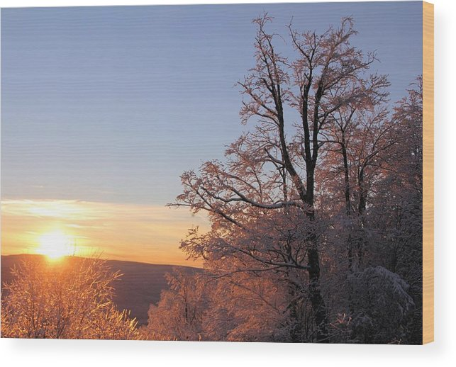 Sunset Wood Print featuring the photograph Sunset on Ice by Carolyn Postelwait