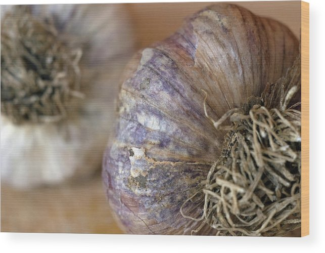 Garlic Wood Print featuring the photograph Two Garlic Heads, Close-up by Rebecca E Marvil
